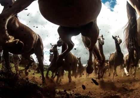 """""""O poder dos criolos"""": fotografia para a National Geographic ( Foto: Chris Schmid)"""