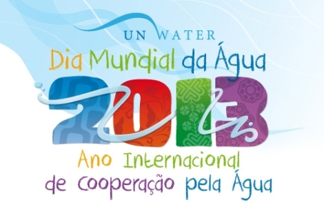 Um dos materiais de divulgação do ano pela cooperação da água encontrada no site da Unesco (Foto: http://www.unesco.org/new/fileadmin/MULTIMEDIA/FIELD/Brasilia/brz_water_day_year_logo_pt_2013-novo.jpg)